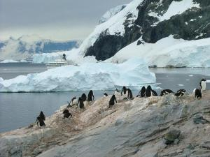 Photo from: http://www.trekearth.com/gallery/Antarctica/Antarctica/Lesser/Antarctic_Peninsula/Paradise_Bay/photo596568.htm