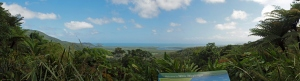 Panaoramic of the Daintree meeting the reef