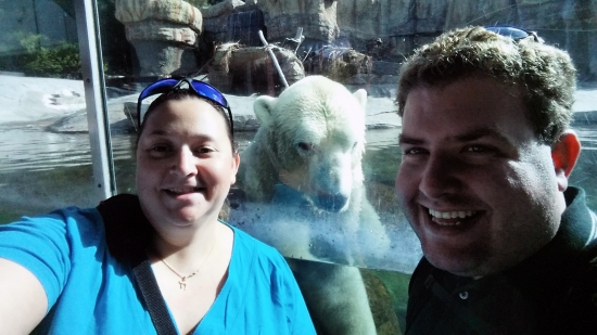 A selfie with the polar bear! (from a phone camera)
